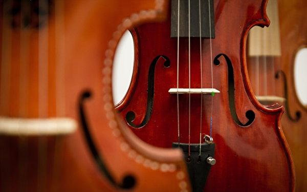 Die Musikinstrumente dürfen gestimmt werden: Das Musikförderprogramm wird am Marie-Curie-Gymnasium fortgeführt