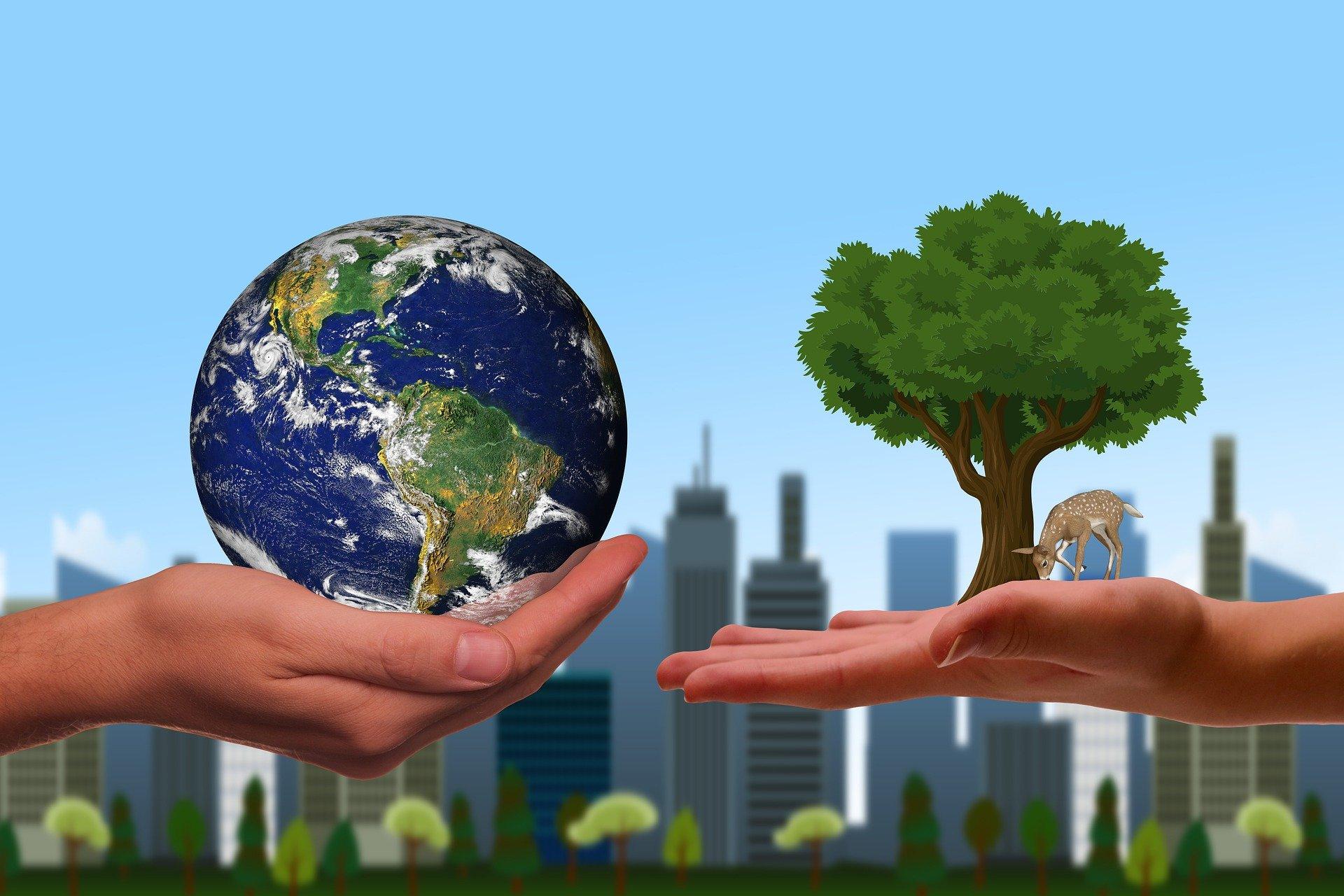 Die Woche der Nachhaltigkeit am MCG – Seid dabei!